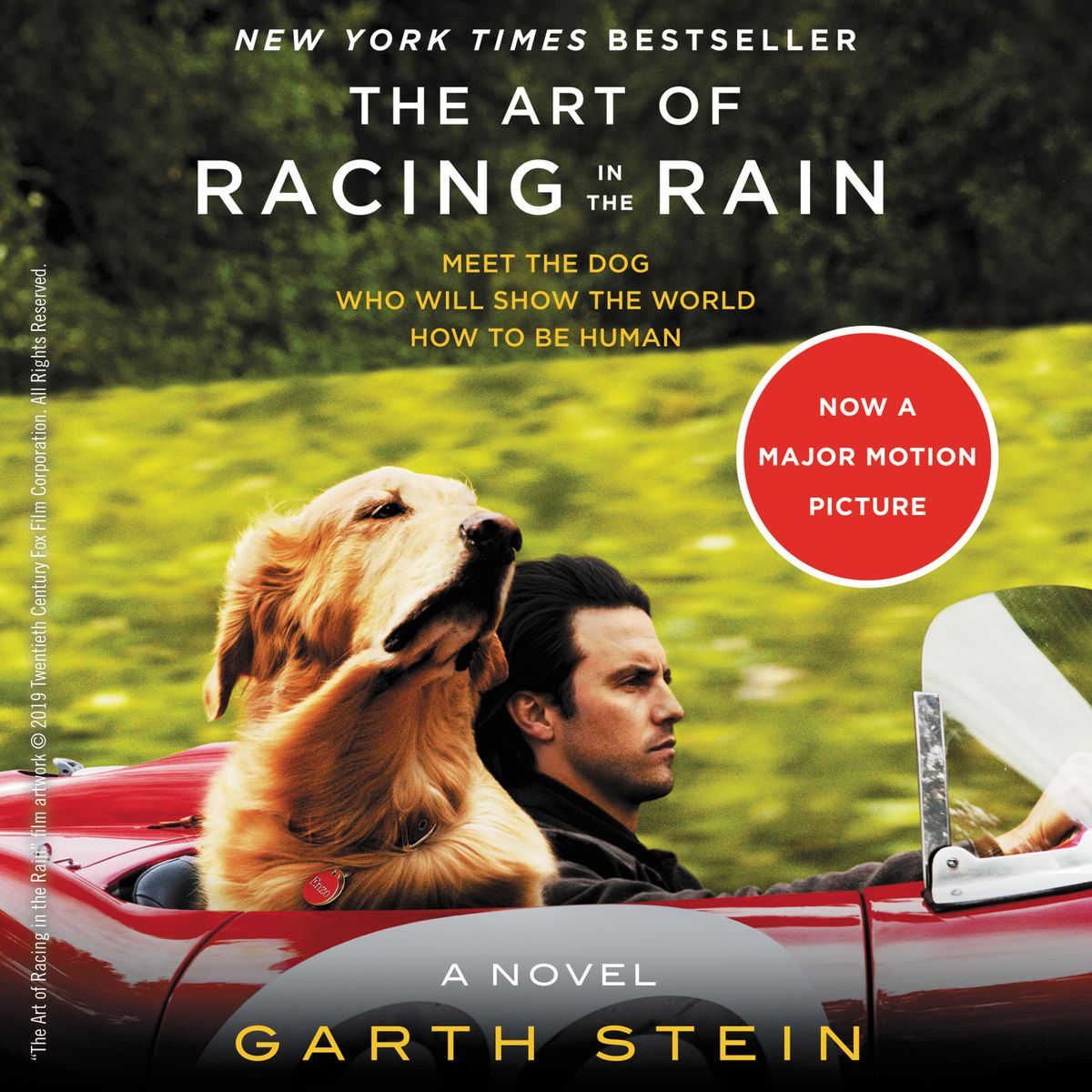 Art of Racing in the Rain cover