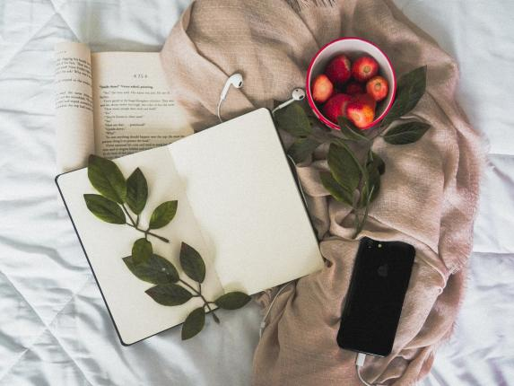Photo of books, blanket, iPhone, leaves and strawberries.