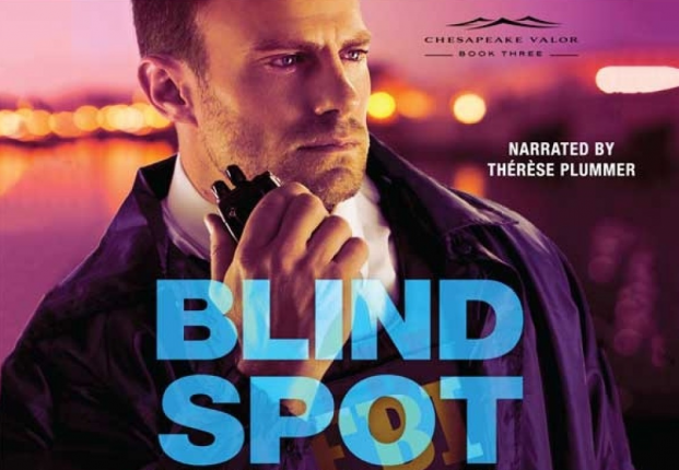 Book cover of Blind Spot